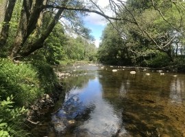 Ruchill Water at Cultybraggan © Katie Muchan, NRFA